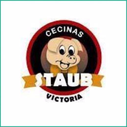 CECINAS STAUB