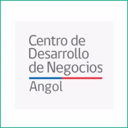 CENTRO DE NEGOCIOS ANGOL - Victoria
